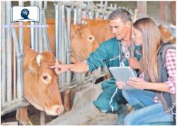 curso de bienestar animal para profesionales 2