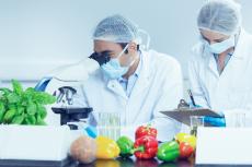 Tecnólogos de los alimentos