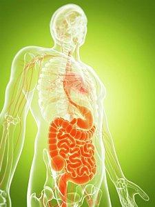 curso de nutrición enteral