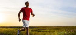 curso de fisioterapia deportiva para profesionales