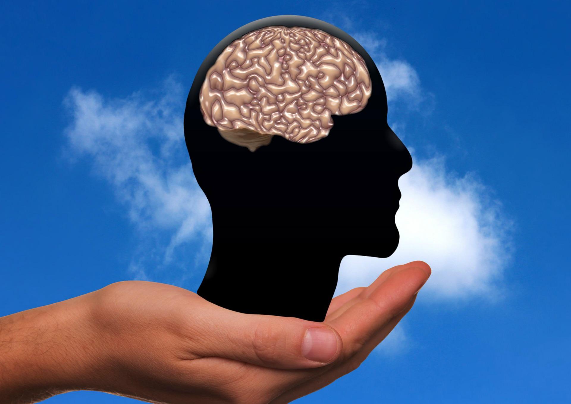 cerebro en mano